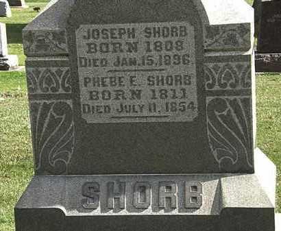 SHORB, PHEBE E. - Morrow County, Ohio | PHEBE E. SHORB - Ohio Gravestone Photos