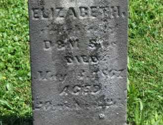 SIPE, ELIZABETH - Morrow County, Ohio | ELIZABETH SIPE - Ohio Gravestone Photos