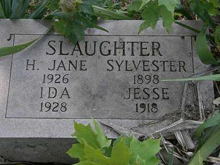 SLAUGHTER, H. JANE - Morrow County, Ohio | H. JANE SLAUGHTER - Ohio Gravestone Photos