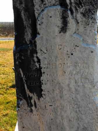 THOMPSON, DAISY E - Morrow County, Ohio | DAISY E THOMPSON - Ohio Gravestone Photos