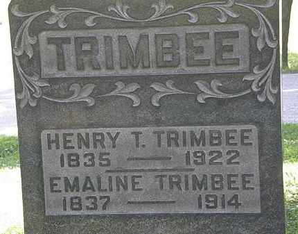 TRIMBEE, HENRY T. - Morrow County, Ohio | HENRY T. TRIMBEE - Ohio Gravestone Photos