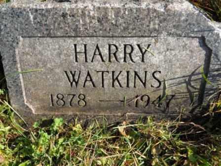 WATKINS, HARRY - Morrow County, Ohio | HARRY WATKINS - Ohio Gravestone Photos