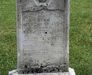 WHITE, CALISTA - Morrow County, Ohio | CALISTA WHITE - Ohio Gravestone Photos