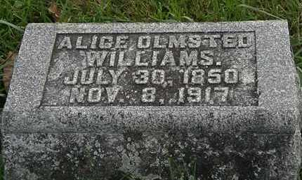 OLMSTED WILLIAMS, ALICE - Morrow County, Ohio | ALICE OLMSTED WILLIAMS - Ohio Gravestone Photos
