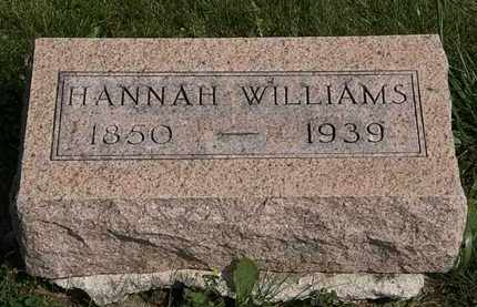 WILLIAMS, HANNAH - Morrow County, Ohio | HANNAH WILLIAMS - Ohio Gravestone Photos