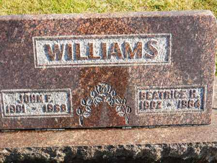 WILLIAMS, JOHN F - Morrow County, Ohio | JOHN F WILLIAMS - Ohio Gravestone Photos