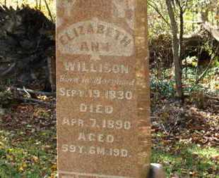 WILLISON, ELIZABETH ANN - Morrow County, Ohio | ELIZABETH ANN WILLISON - Ohio Gravestone Photos