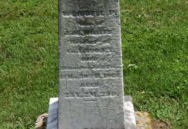 WILLITS, WENDELL P. - Morrow County, Ohio | WENDELL P. WILLITS - Ohio Gravestone Photos