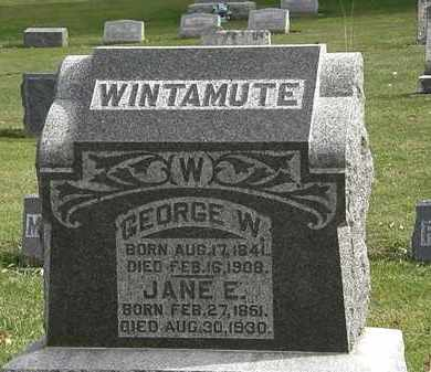WINTAMUTE, GEORGE W. - Morrow County, Ohio | GEORGE W. WINTAMUTE - Ohio Gravestone Photos