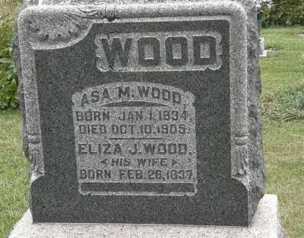 WOOD, ELISZA J. - Morrow County, Ohio | ELISZA J. WOOD - Ohio Gravestone Photos