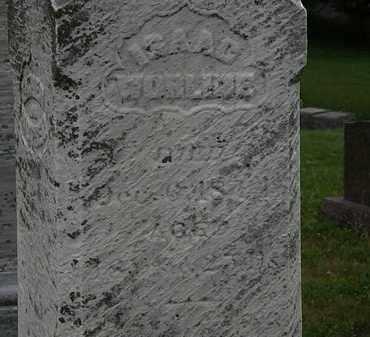 WORLINE, ISAAC - Morrow County, Ohio | ISAAC WORLINE - Ohio Gravestone Photos