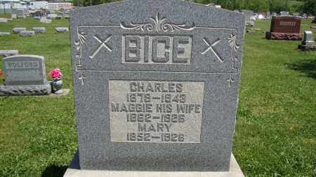 BICE, MARY - Muskingum County, Ohio | MARY BICE - Ohio Gravestone Photos