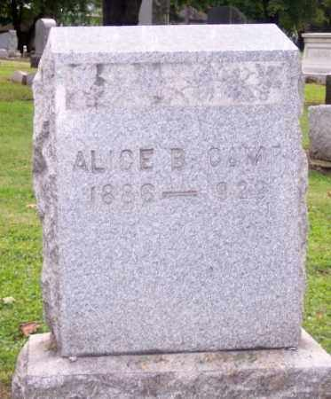 CAMP, ALICE B. - Muskingum County, Ohio | ALICE B. CAMP - Ohio Gravestone Photos