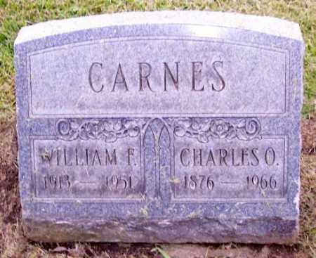 CARNES, WILLIAM F. - Muskingum County, Ohio | WILLIAM F. CARNES - Ohio Gravestone Photos