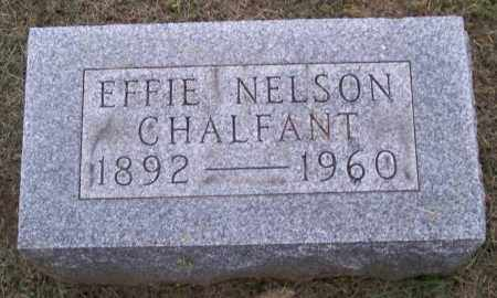 CHALFANT, EFFIE - Muskingum County, Ohio | EFFIE CHALFANT - Ohio Gravestone Photos