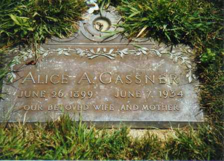 GASSNER, ALICE ALVERNA - Muskingum County, Ohio | ALICE ALVERNA GASSNER - Ohio Gravestone Photos