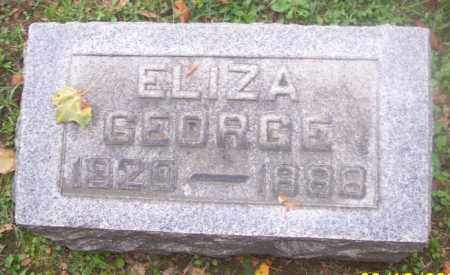 GEORGE, ELIZA - Muskingum County, Ohio | ELIZA GEORGE - Ohio Gravestone Photos