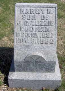 LUDMAN, HARRY R. - Muskingum County, Ohio | HARRY R. LUDMAN - Ohio Gravestone Photos