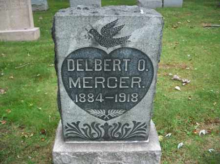 MERCER, DELBERT O. - Muskingum County, Ohio | DELBERT O. MERCER - Ohio Gravestone Photos