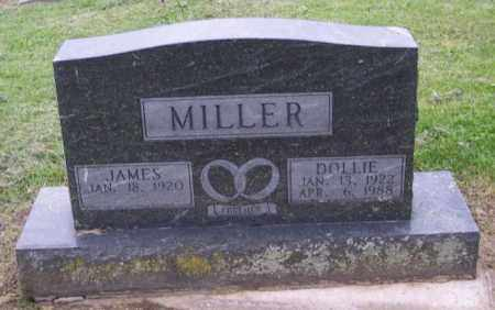 MILLER, DOLLIE - Muskingum County, Ohio | DOLLIE MILLER - Ohio Gravestone Photos