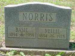 NORRIS, NELLIE - Muskingum County, Ohio | NELLIE NORRIS - Ohio Gravestone Photos