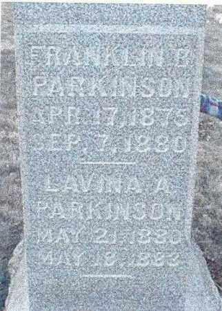 PARKINSON, FRANKLIN BURNS - Muskingum County, Ohio | FRANKLIN BURNS PARKINSON - Ohio Gravestone Photos