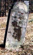 HILL REDMAN, SUSANNA - Muskingum County, Ohio | SUSANNA HILL REDMAN - Ohio Gravestone Photos