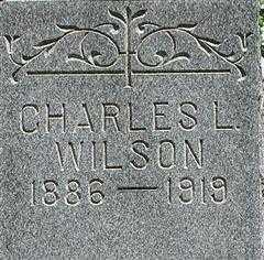 WILSON, CHARLES - Muskingum County, Ohio | CHARLES WILSON - Ohio Gravestone Photos