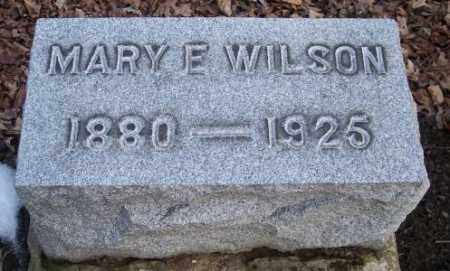 WILSON, MARY E. - Muskingum County, Ohio | MARY E. WILSON - Ohio Gravestone Photos