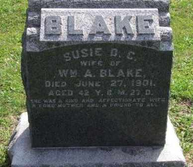 STALEY BLAKE, SUSIE - Paulding County, Ohio | SUSIE STALEY BLAKE - Ohio Gravestone Photos