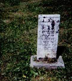 NORRIS, RANDOLPH - Perry County, Ohio | RANDOLPH NORRIS - Ohio Gravestone Photos