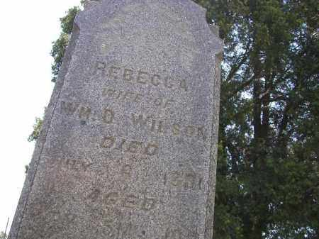 WILSON, REBECCA - Perry County, Ohio | REBECCA WILSON - Ohio Gravestone Photos