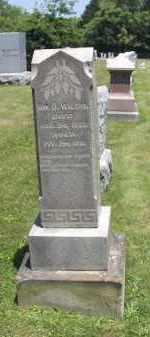 WILSON, WILLIAM - Perry County, Ohio | WILLIAM WILSON - Ohio Gravestone Photos