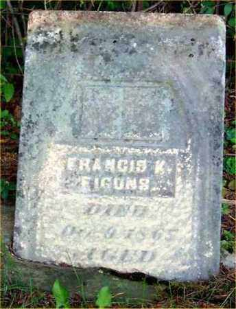 FIGONS, FRANCIS K. - Pickaway County, Ohio | FRANCIS K. FIGONS - Ohio Gravestone Photos