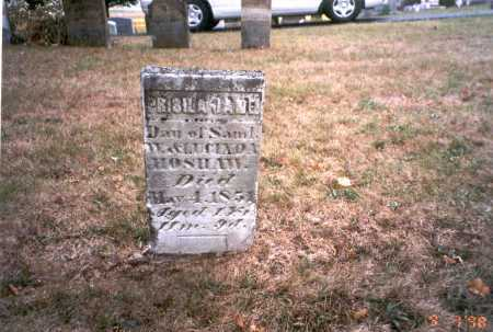 HOSHAW, PRISILA JANE - Pickaway County, Ohio | PRISILA JANE HOSHAW - Ohio Gravestone Photos