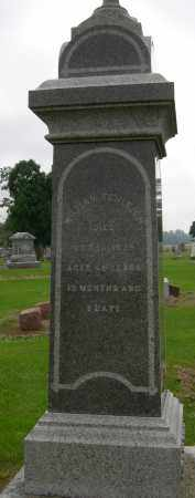 SCHLEICH, WILLIAM C. - Pickaway County, Ohio | WILLIAM C. SCHLEICH - Ohio Gravestone Photos