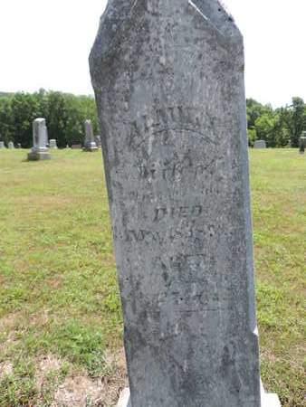 ALEXANDER, ALMIE - Pike County, Ohio | ALMIE ALEXANDER - Ohio Gravestone Photos