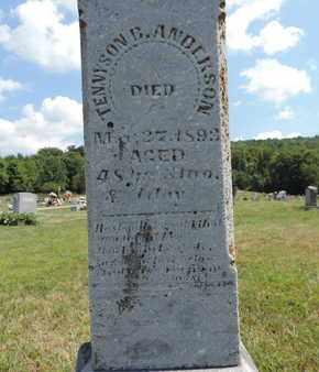 ANDERSON, TENNYSON E. - Pike County, Ohio | TENNYSON E. ANDERSON - Ohio Gravestone Photos