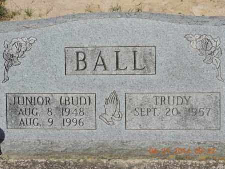 BALL, JUNIOR - Pike County, Ohio | JUNIOR BALL - Ohio Gravestone Photos