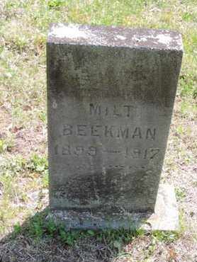 BEEKMAN, MILT - Pike County, Ohio | MILT BEEKMAN - Ohio Gravestone Photos