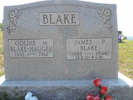 BLAKE, JAMES P. - Pike County, Ohio | JAMES P. BLAKE - Ohio Gravestone Photos
