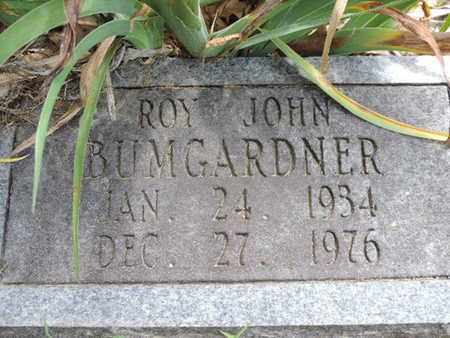 BUMGARDNER, ROY JOHN - Pike County, Ohio | ROY JOHN BUMGARDNER - Ohio Gravestone Photos