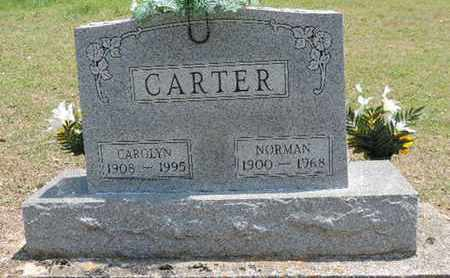 CARTER, NORMAN - Pike County, Ohio | NORMAN CARTER - Ohio Gravestone Photos