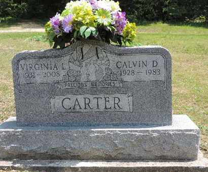 CARTER, VIRGINIA L. - Pike County, Ohio | VIRGINIA L. CARTER - Ohio Gravestone Photos