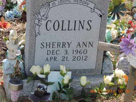 COLLINS, SHERRY - Pike County, Ohio | SHERRY COLLINS - Ohio Gravestone Photos