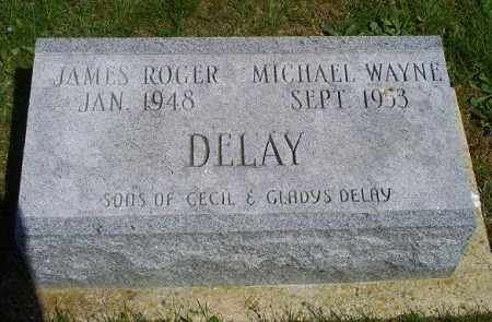 DELAY, MICHAEL WAYNE - Pike County, Ohio | MICHAEL WAYNE DELAY - Ohio Gravestone Photos
