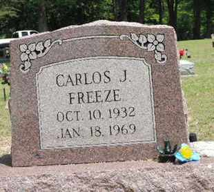 FREEZE, CARLOS J. - Pike County, Ohio | CARLOS J. FREEZE - Ohio Gravestone Photos