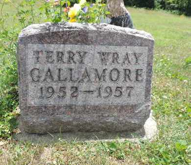 GALLAMORE, TERRY WRAY - Pike County, Ohio | TERRY WRAY GALLAMORE - Ohio Gravestone Photos