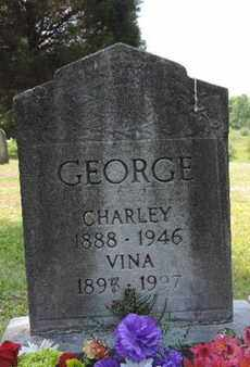 GEORGE, VINA - Pike County, Ohio | VINA GEORGE - Ohio Gravestone Photos