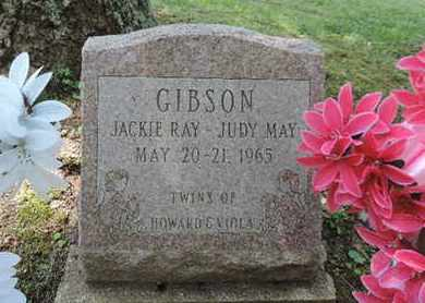 GIBSON, JACKIE RAY - Pike County, Ohio | JACKIE RAY GIBSON - Ohio Gravestone Photos